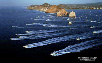 Los cabos sportfishing cabo fishing report for Los cabos fishing
